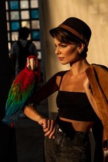 美女与鹦鹉高清图