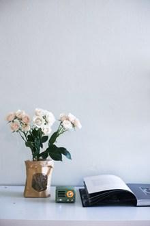 玫瑰插花书籍小音箱图片素材