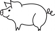 猪简笔画高清图