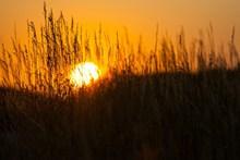 黄昏夕阳唯美意境图片