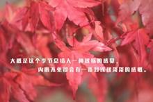 秋季文字说说图片下载