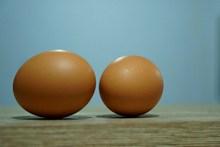 家养土鸡蛋高清图