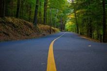 森林柏油公路高清图片