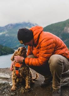 男人和狗图片下载