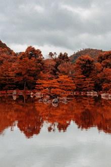 秋天红色树林倒影图片