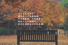 秋天唯美带字高清图