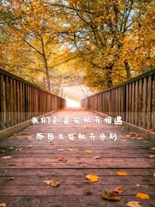 秋季唯美说说高清图