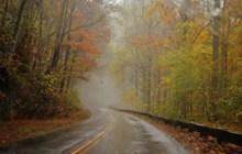 秋天清晨雾气公路风景精美图片