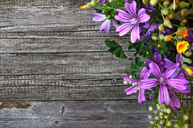 木板上鲜花背景图片