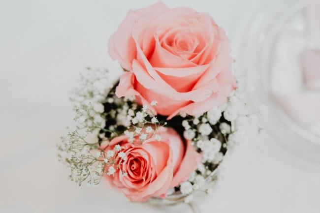 玫瑰花清新唯美图片下载