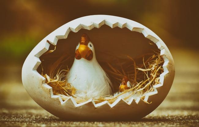 复活节卡通母鸡图片下载
