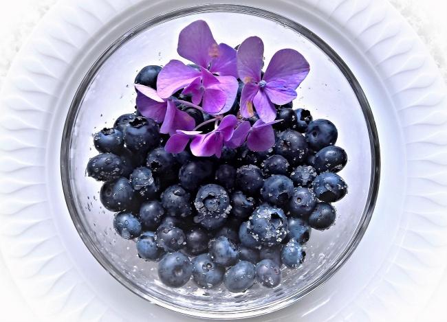 一碗蓝莓果图片素材