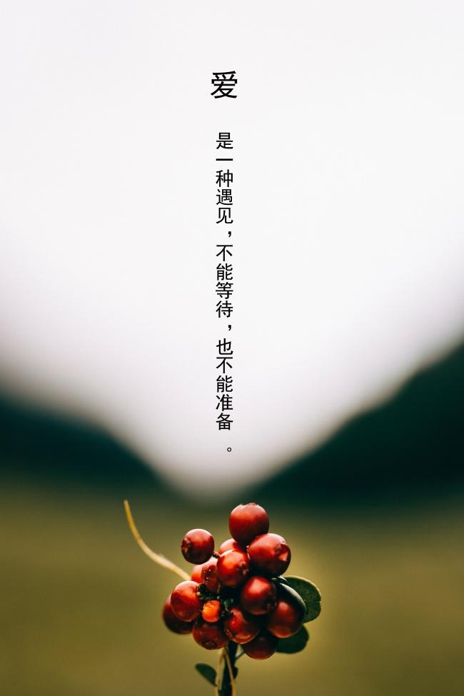 森系文艺范说说图片