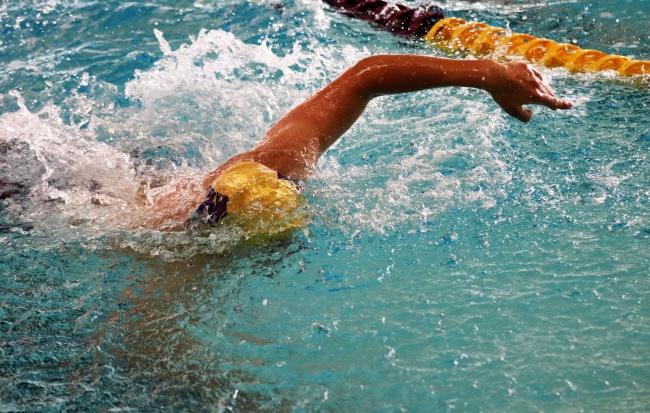 自由泳划水动作图片下载