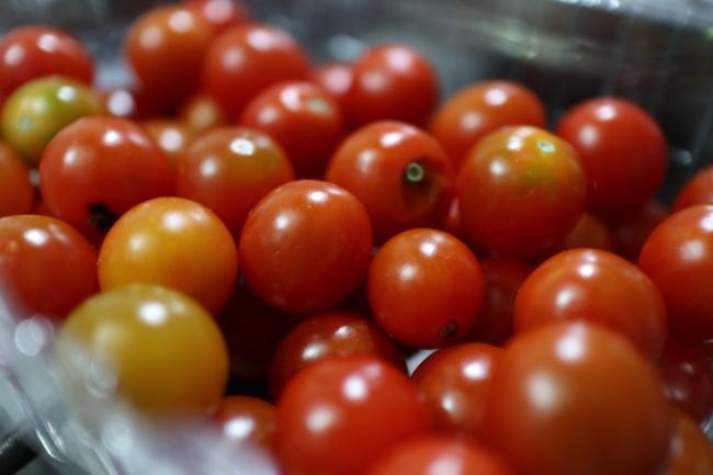 新鲜小番茄图片