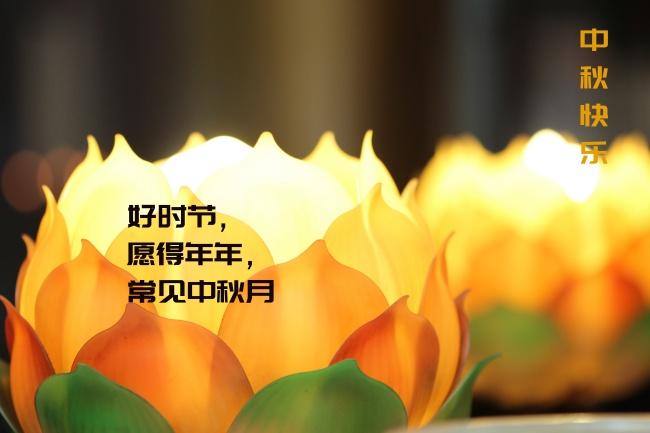 中秋莲花灯会图片素材
