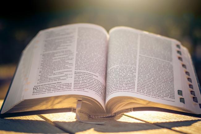 打开的英文书籍高清图