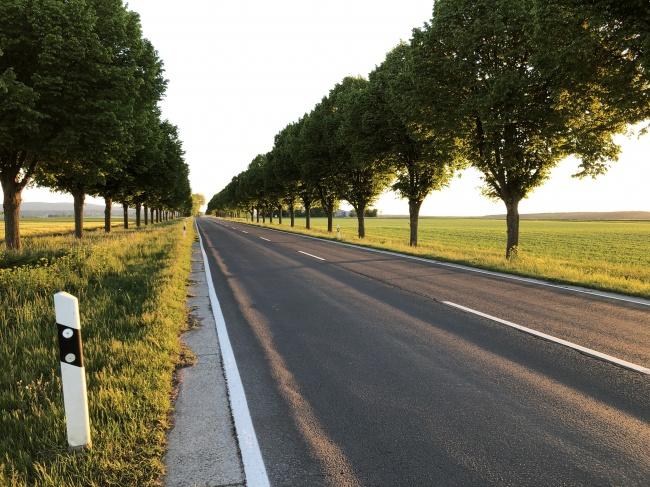 郊区公路景观图片大全