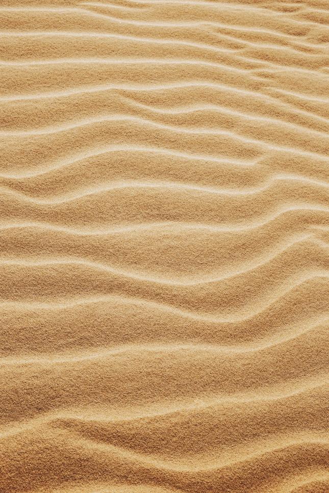 沙漠中的细沙丘图片下载