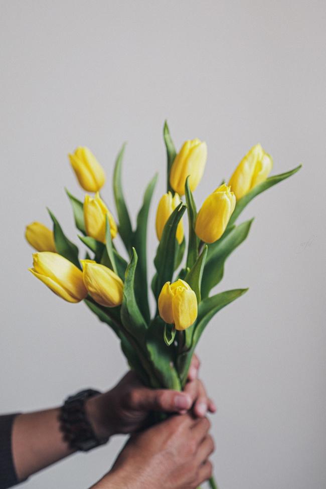 黄色郁金香手捧花图片素材
