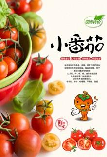 小番茄海报psd分层素材